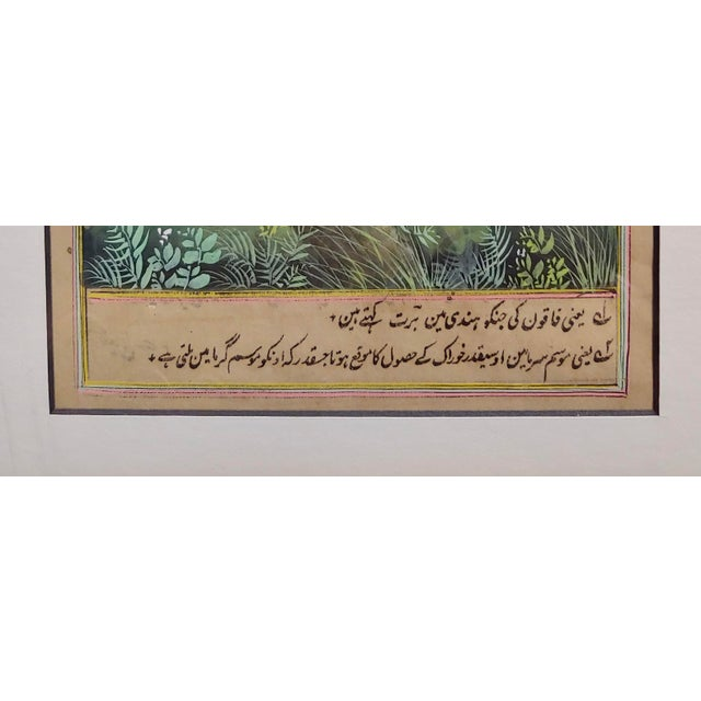 18th Century Antique Middle Eastern or Persian Falcon Painting W/Calligraphy For Sale In Los Angeles - Image 6 of 8
