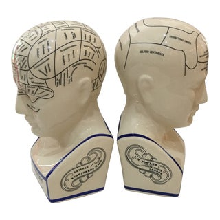 Phrenology Head Ceramic Bookends - a Pair For Sale