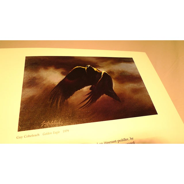1990s Baby Elephant Illustrated Folio Book, Audubon's Birds of America For Sale - Image 9 of 12