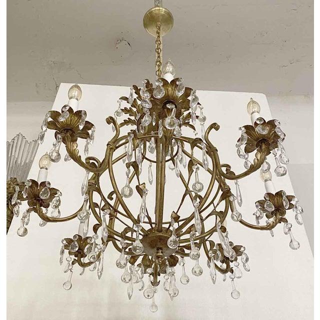 Florentine Style Crystal & Gilt Metal Chandelier For Sale - Image 9 of 10
