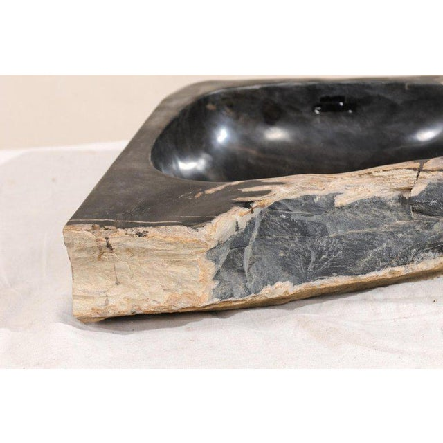 Black and Tan Polished Petrified Wood Sink For Sale - Image 10 of 12