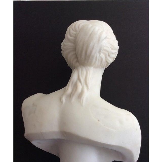 19th Century 19th Century Venus De Milo Marble Bust For Sale - Image 5 of 12