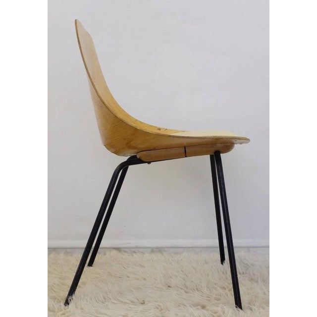 "Steiner Set of Three Pierre Guariche ""Tonneau"" Bentwood Chairs for Steiner Edition, 1954 For Sale - Image 4 of 8"