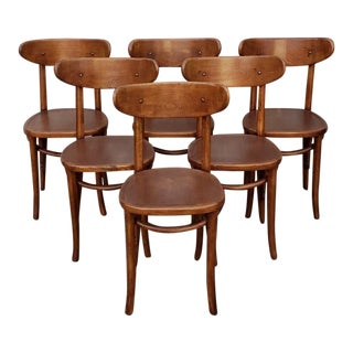 Vintage French 1950's Cafe Chairs - Set of 6 For Sale