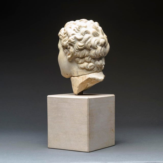 Marble Hellenistic Marble Head of Alexander the Great For Sale - Image 7 of 8