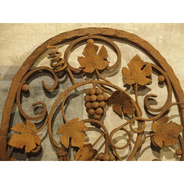 Iron Decorative Oval Iron Wall Hanging With Scrolling Grape Vines For Sale - Image 7 of 11
