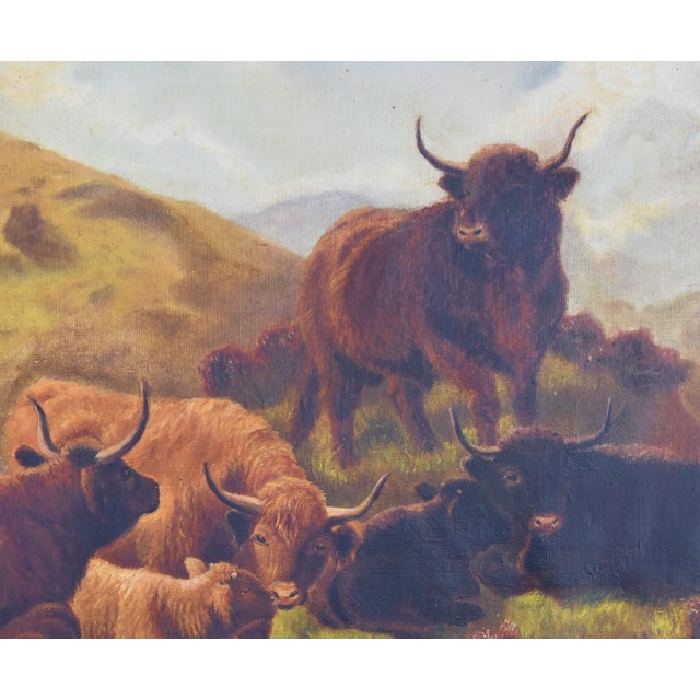 2518a876821 Oil Paint Vintage Scottish Highland Cattle Oil Painting For Sale - Image 7  of 11