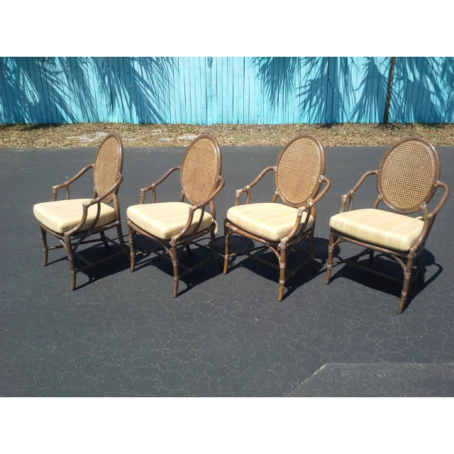 Animal Skin McGuire Louis XVI Cane Seat Chairs - Set of 4 For Sale - Image 7 of 9