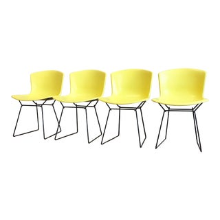 1960s Mid-Century Modern Knoll Bertoia Molded Fiberglass Chairs - Set of 4