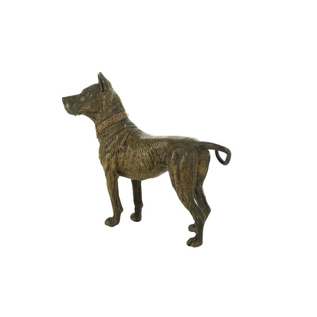 Original Bronze Pit Bull Sculpture For Sale - Image 4 of 9