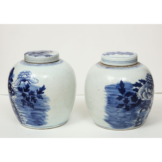 Ceramic Chinese Export Ginger Jars - A Pair For Sale - Image 7 of 13