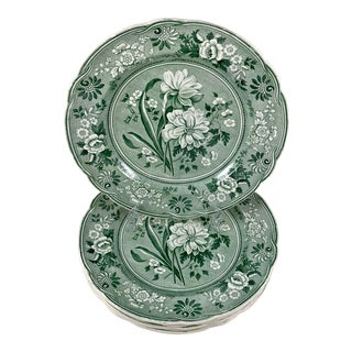 Copeland Garrett Spode Green Botanical Jonquil Transferware Dinner Plates S/6 For Sale