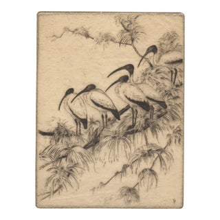 """Wood-Ibis"" Etching by Manfred Niedeck c.1940s"