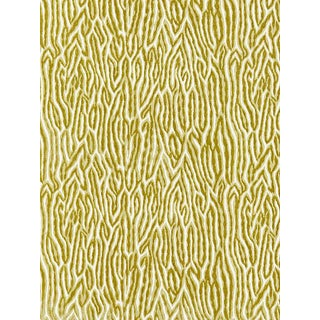 Scalamandre Faux Bois Velvet, Peridot Fabric For Sale