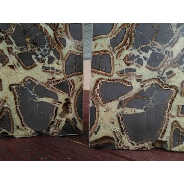 Boho Chic Septarian Concretion Bookends - a Pair For Sale - Image 3 of 6