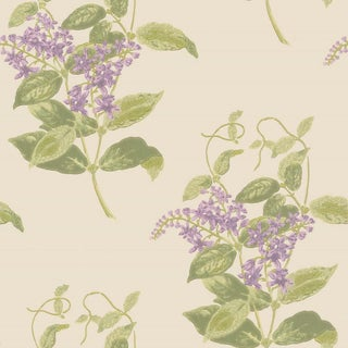 Cole & Son Madras Violet Classic Botanical Style Wallpaper Sample For Sale