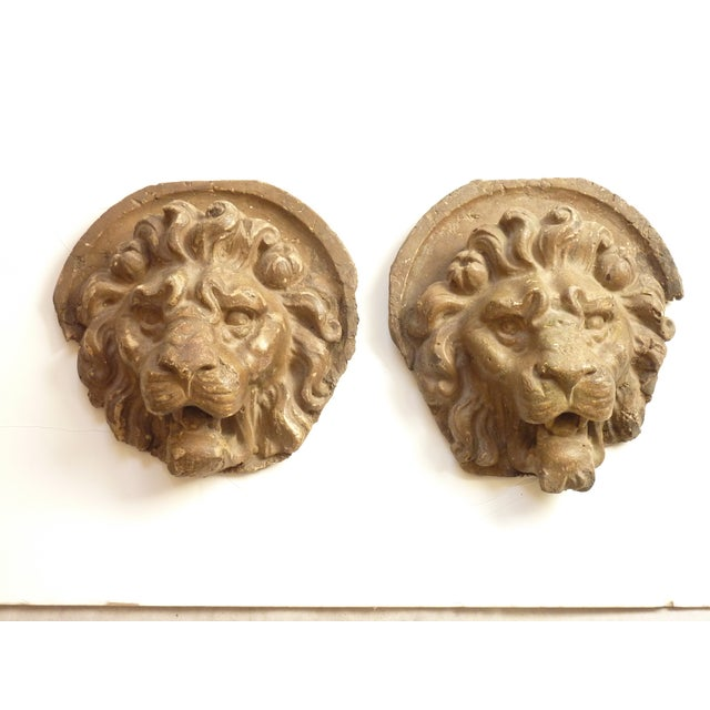 Wall Mounted Lion Heads - A Pair For Sale - Image 4 of 4