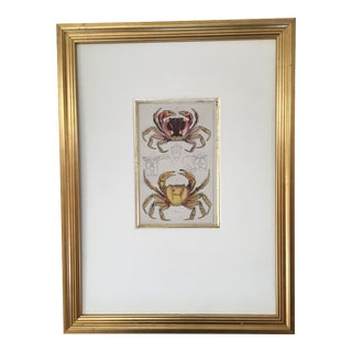 Colorful Crabs Engraving, Framed For Sale