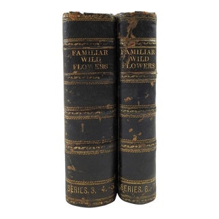 Familiar Wild Flowers 1902 - 2 Volumes For Sale