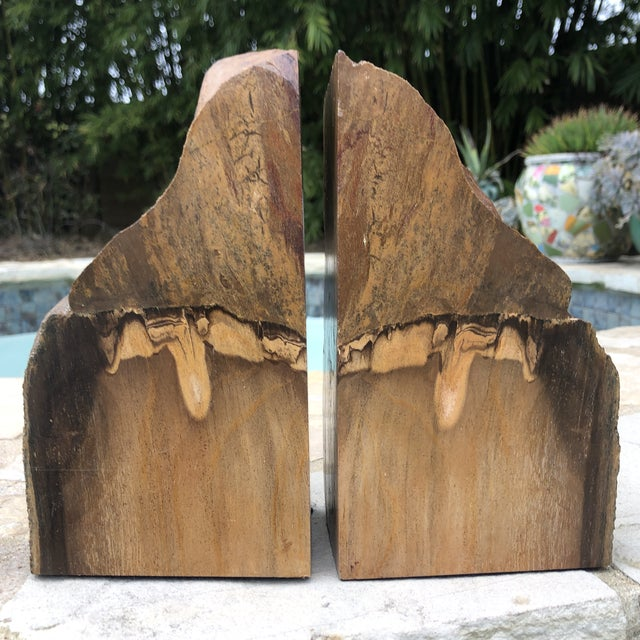 Brown Prehistoric Polished and Natural Petrified Wood Bookends - a Pair For Sale - Image 8 of 13