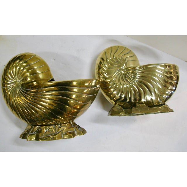 Vintage Large Pair of Brass Nautilus Seashell Planters or Centerpieces. Large, heavy polished solid Brass Nautilus shells,...
