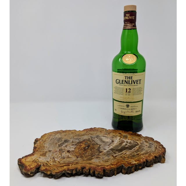 Contemporary Arhaus Inspired Petrified Wood Tray For Sale - Image 3 of 10