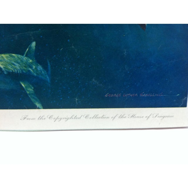 """Vintage """"Sperm Whale"""" Color Animal Print by George L. Schelling Circa 1960 For Sale - Image 4 of 5"""