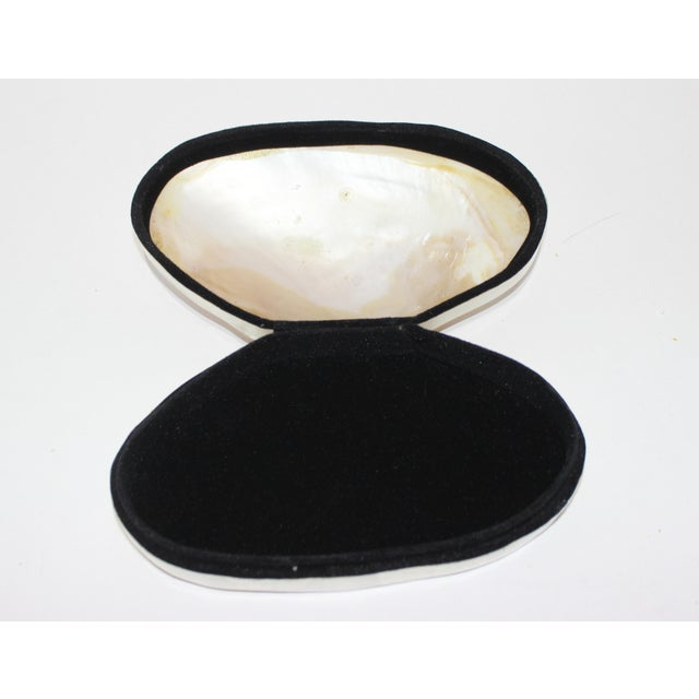 Pearlized Shell and Capiz Shell Trinket Box Velvet Lining from a Palm Beach estate. The top is a single pearlized shell....