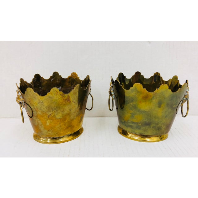 Pair Stunning Vintage Early Mid Century Solid Gold Brass Cache Pot Urns with Scalloped Edges and Lions Head Handles at...