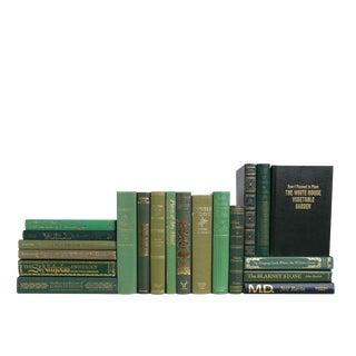 Retro Fern : Set of Twenty Decorative Books