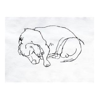 """""""Beagle Sleep"""" Drawing"""