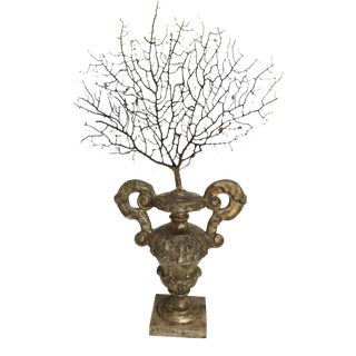 Antique Italian Silvered Wood Urn With Sea Fan For Sale