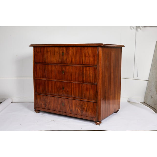 Large 19th Century Biedermeier Commode of Rosewood For Sale - Image 13 of 13
