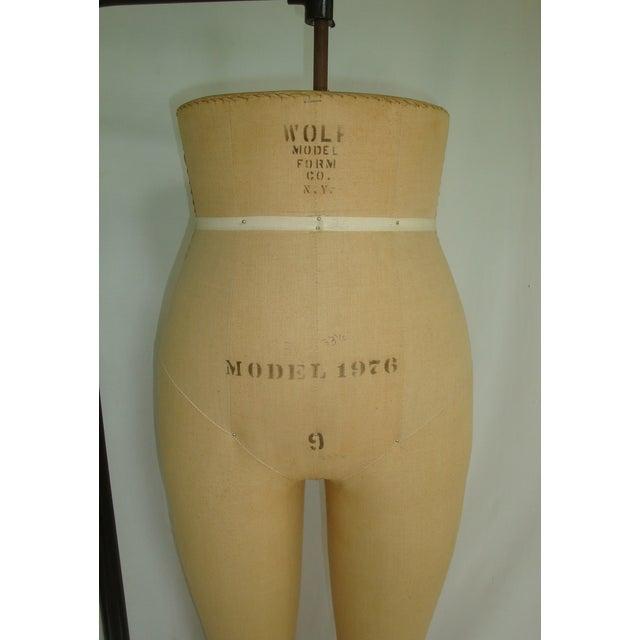Vintage Wolf Dress Form Ladies Mannequin For Sale - Image 5 of 7