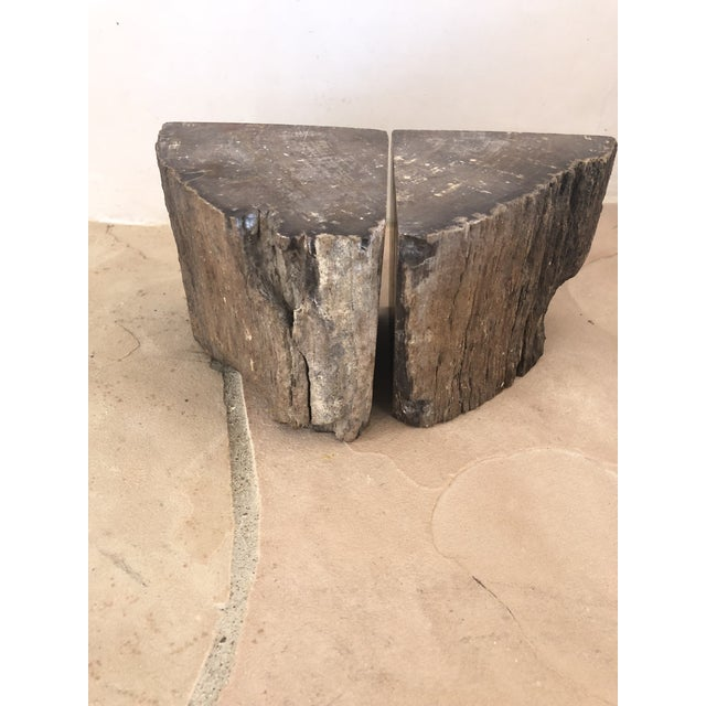 1900s Organic Modern Petrified Wood Bookends - a Pair For Sale In Santa Fe - Image 6 of 10