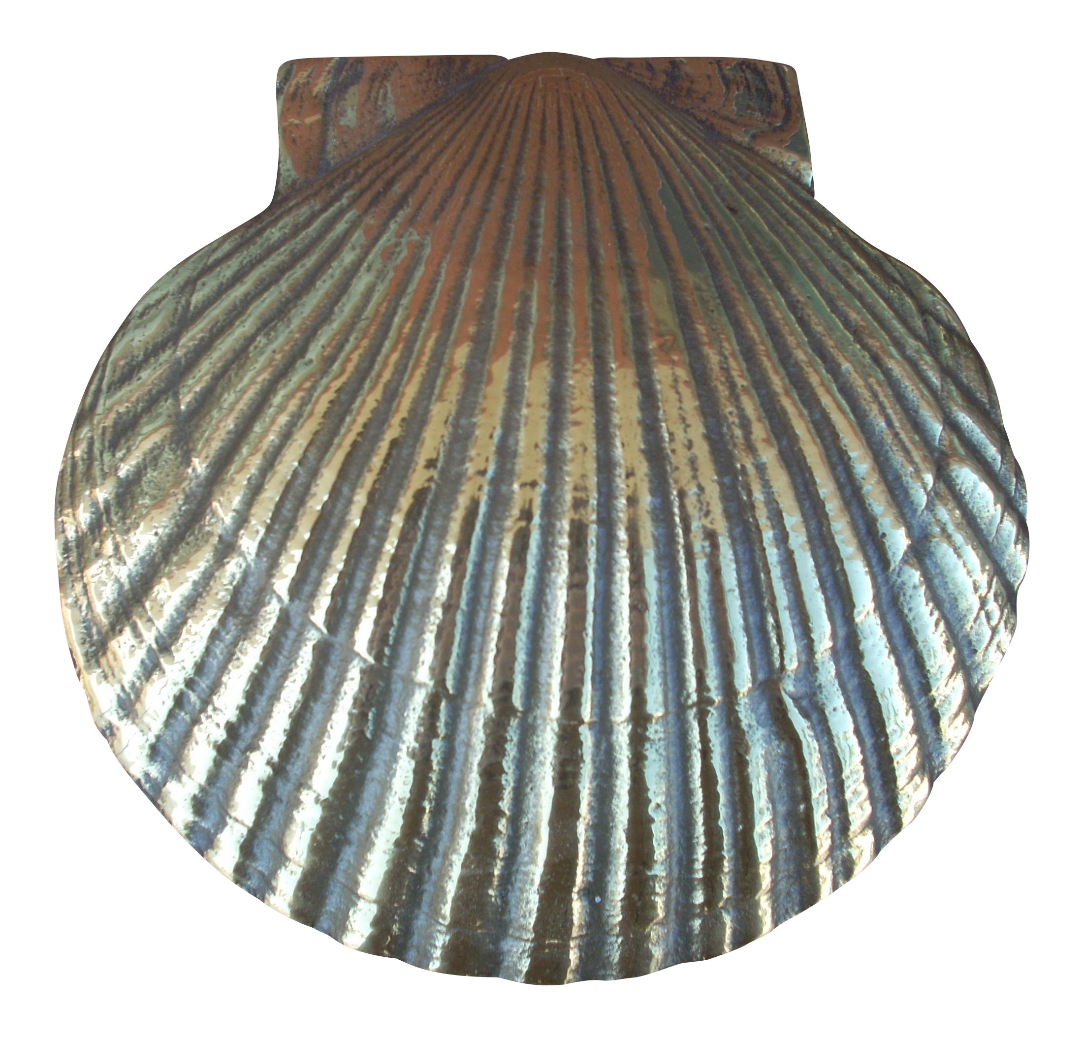Attrayant Brass Scallop Shell Door Knocker