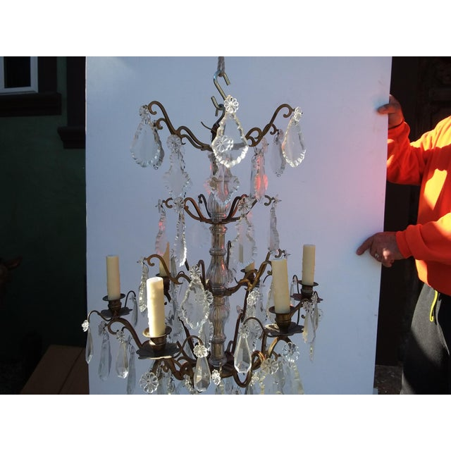 French Bronze and Crystal Cage Style Chandelier For Sale In San Antonio - Image 6 of 13