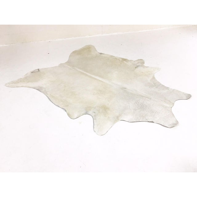 Rare Ivory Brazilian Cowhide Rug For Sale - Image 4 of 4