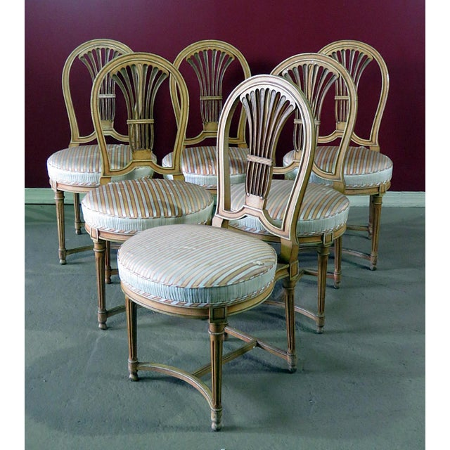 Set of 6 Louis XVI style distressed dining side chairs.