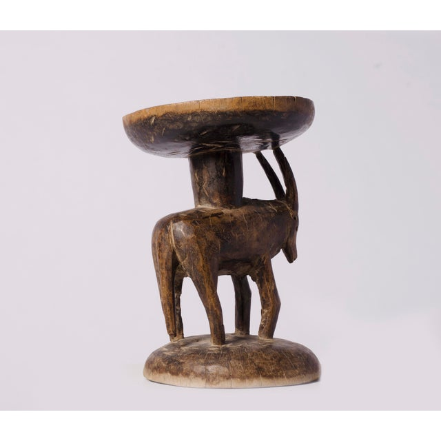 East African Oryx Sculpture - Image 4 of 5