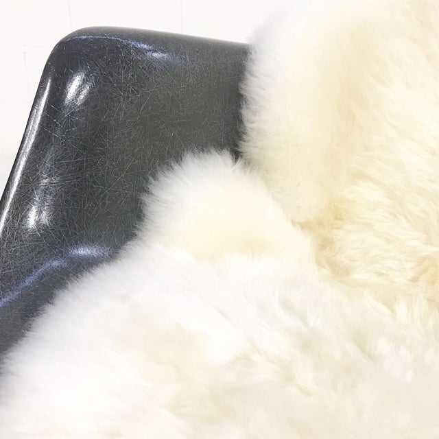 Charles & Ray Eames for Herman Miller Rar Rockers With Sheepskins - a Pair - Image 6 of 7