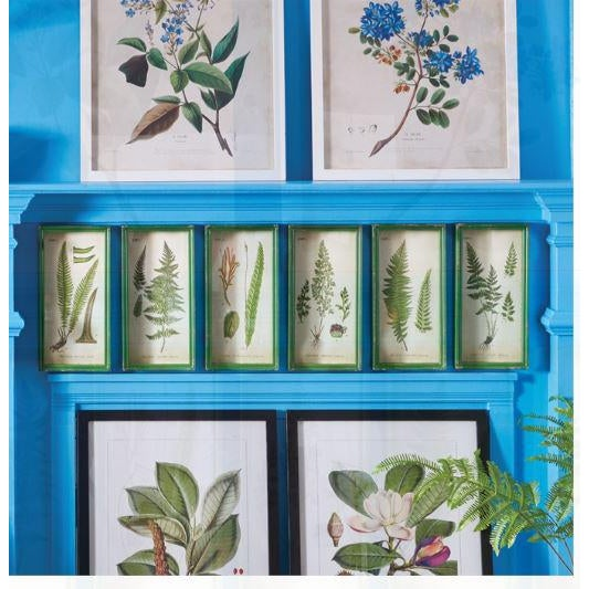 This monochromatic fern leaf study adds color and life to study or office. The antiqued green shadow box frames give them...