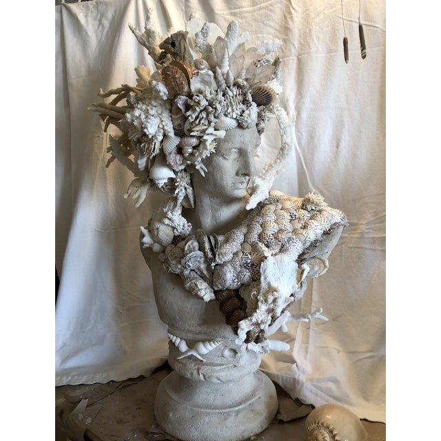 Brown Contemporary Nautical Shell & Coral Apollo Bust For Sale - Image 8 of 9