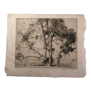 """1924 Antique Alfred Hutty """"Sycamores"""" Etching Print For Sale"""