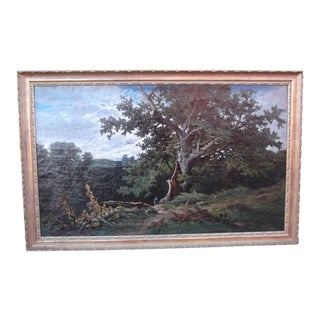 Mid 19th Century Oil on Canvas Countryside Oak Tree by Charles Volkmar For Sale