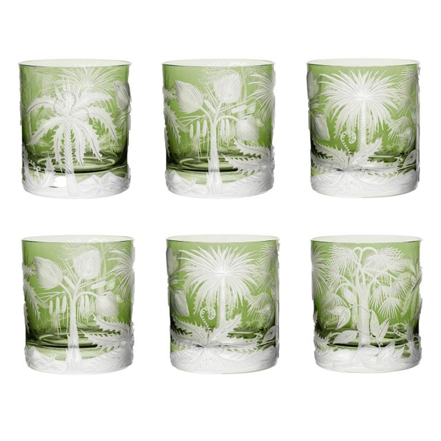 Glass ARTEL Primeval Palms Double Old Fashioned Glass in Khaki Green - Set of 6 For Sale - Image 7 of 7