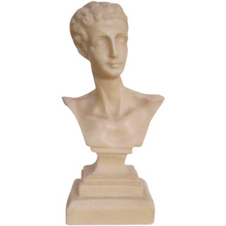 Midcentury Italian Classical Roman Sculpture Bust For Sale