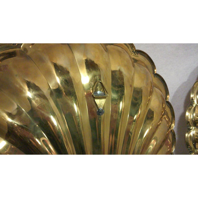 Solid Brass Shell Wall Candle Sconces - A Pair - Image 6 of 8