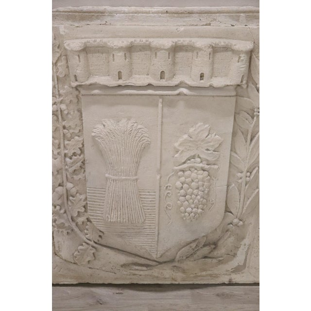 19th Century Italian Pozzolan Large Heraldic Coat of Arms, Wall Decoration For Sale - Image 6 of 13