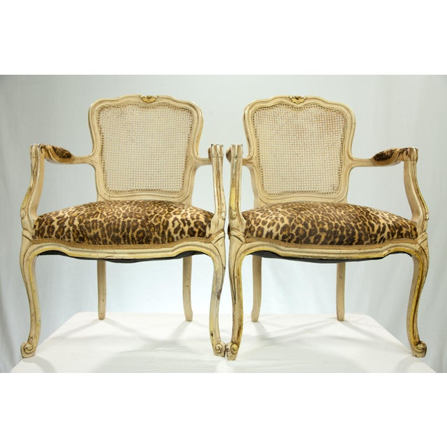 Louis XVI Fauteuil Leopard Print Chairs - A Pair - Image 2 of 5
